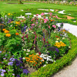 Delightful flower bed in summer park — Stock Photo #41537469