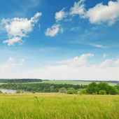 Green  field and blue cloudy sky — Stockfoto