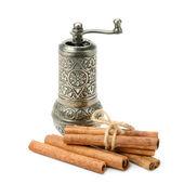Cinnamon and manual  grinder  — Stock Photo