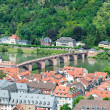 City of Heidelberg. Germany — Stock Photo #44270641