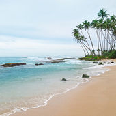 Ocean and coconut palms on the shore — Stockfoto