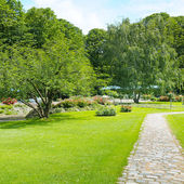 park and lawn — Stockfoto