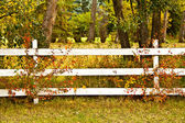 Autumn Fence — Stock Photo