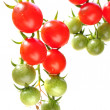 Cherry tomatoes — Stock Photo #12092294