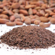 Raw cacao - Stock Photo