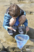 Play in tidepools — Stock Photo