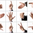 Collection of hands  — Stock Photo
