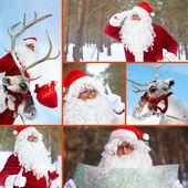 Santa and reindeer — Stock Photo