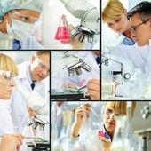 Laboratoriestudie — Stockfoto