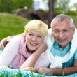 Couple on the lawn — Stock Photo #13723902