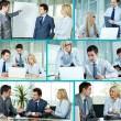 Partners at work — Stock Photo