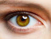 Menselijk oog — Stockfoto