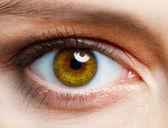 человеческий глаз — Стоковое фото