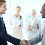 Businessmen handshaking — Stock Photo #16039515