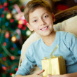 Boy with present — Stock Photo #16042727