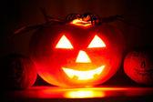 Terrible pumpkin — Stock Photo