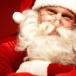 Happy Santa — Stock Photo #16053169