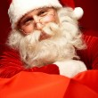 Happy Santa — Stock Photo #16053175