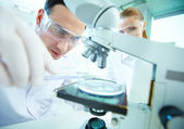 Laboratory research — Foto Stock