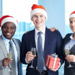 Celebrating Christmas — Stock Photo #17138433