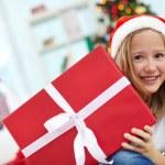 Christmas surprise — Stock Photo #17139275