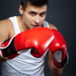 Stock Photo: Male boxer