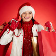 Stok fotoğraf: Girl with shopping bags