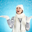 Winter joy — Stock Photo