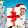 Christmas surprise — Stock Photo