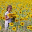 Sunflower happiness — Stock Video