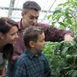 Family in greenhouse — Vídeo Stock