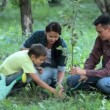 Family planting new tree — Видео