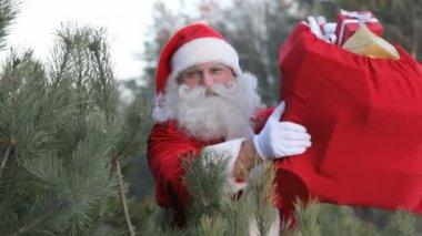 Santa in forest — Stock Video