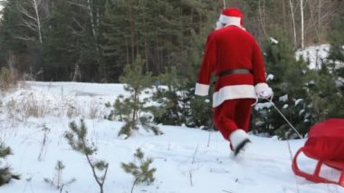 Santa pulling sled — Stock Video