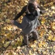 Autumn dance - Stock Photo