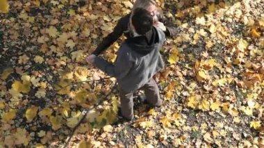 Autumn dance — Stock Video