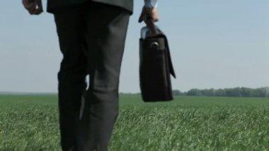 New horizon — Stock Video