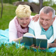 Reading on the lawn — Stock Photo