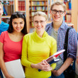 Company of students — Stock Photo #21187683
