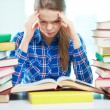 Studying — Stock Photo #24198249
