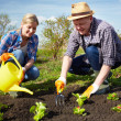 Farmers in the garden — Stock Photo