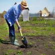 Garden work — Stock Photo #28278125