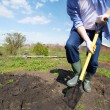 Digging in the garden — Stock Photo