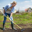 Female gardener — Stock Photo #28278135