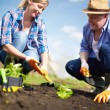 Farmers working — Stock Photo