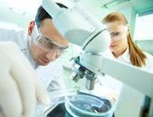 Laboratory research — Stock Photo