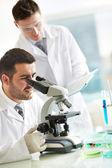 Investigaciones de laboratorio — Foto de Stock
