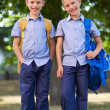Stock Photo: Schoolboys