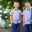 Stock Photo: Twin schoolboys