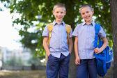 Twin schoolboys — Stock Photo
